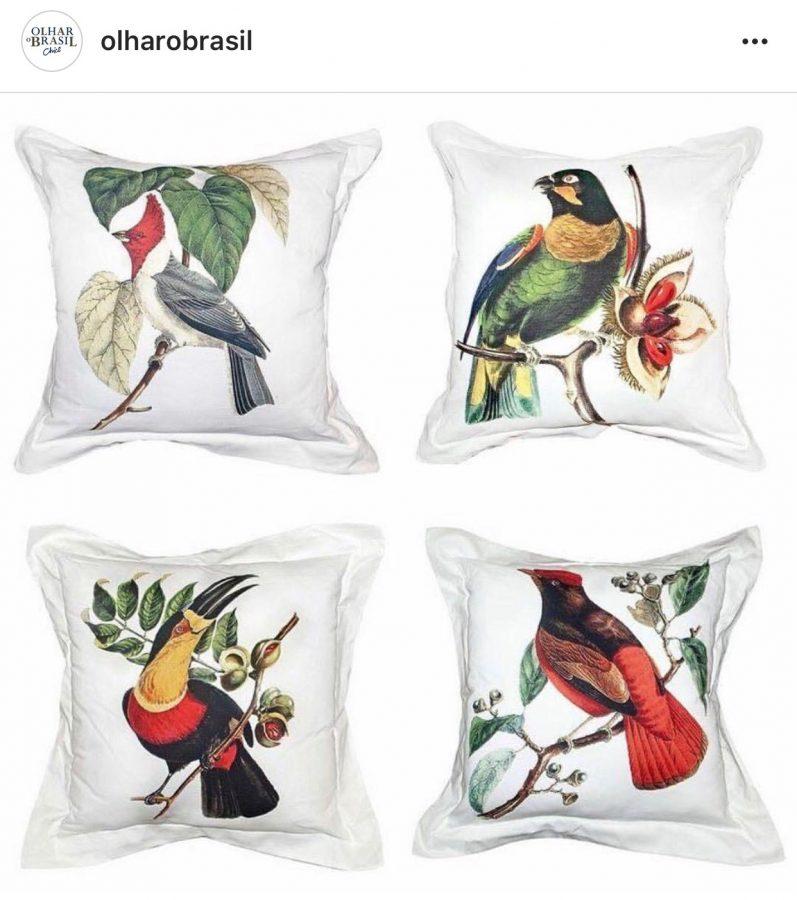 Almofadas com imagens de pássaros Brasileiros - Chico Gouvea